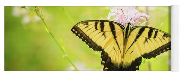 Series Of Yellow Swallowtail #6 Of 6 Yoga Mat
