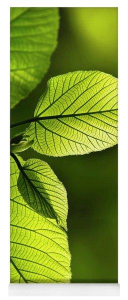 Shades Of Green Yoga Mat