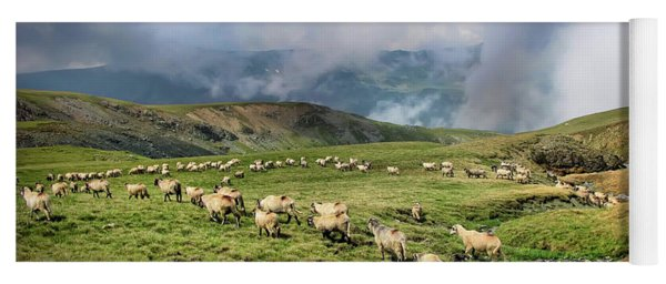 Sheep In Carphatian Mountains Yoga Mat