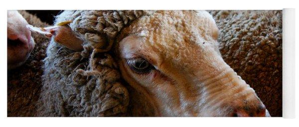 Sheep To Be Sheared Yoga Mat
