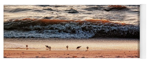 Yoga Mat featuring the photograph Shorebirds by Lars Lentz