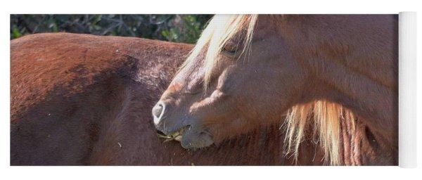Shy One - Wild Pony Of Assateague Island Yoga Mat