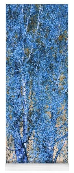 Silver Birch In Blue Yoga Mat