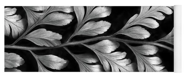 Yoga Mat featuring the photograph Silver Fern by Jessica Jenney