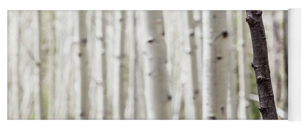 Single Black Birch Tree Trunk Yoga Mat