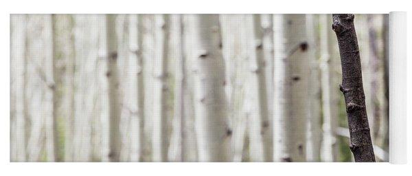 Single Black Birch Tree Trunk Yoga Mat