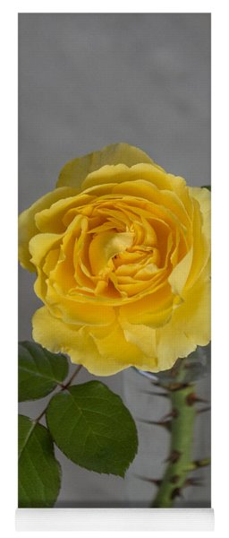 Single Yellow Rose With Thorns Yoga Mat