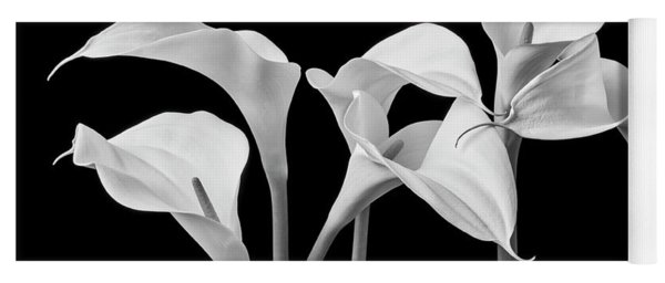Six Calla Lilies In Black And White Yoga Mat