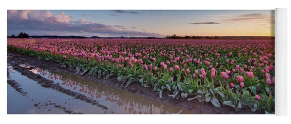 Skagit Valley Tulip Reflections Yoga Mat