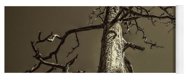 Skeletal Tree Sedona Arizona Yoga Mat