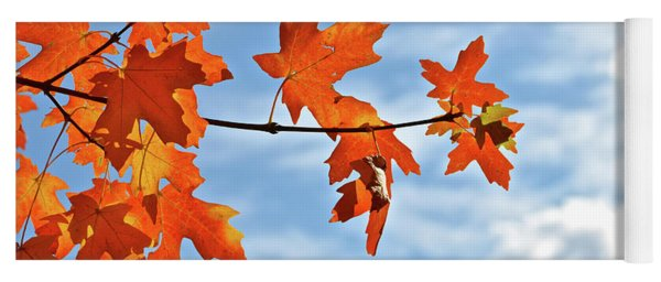 Sky View With Autumn Maple Leaves Yoga Mat