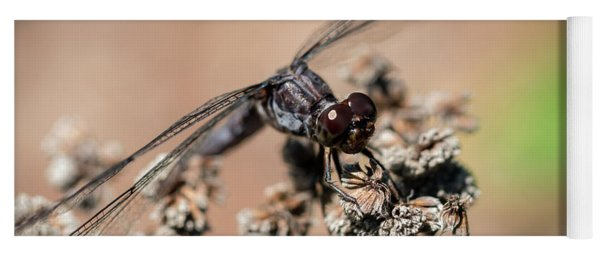 Slaty Skimmer Watching You Yoga Mat