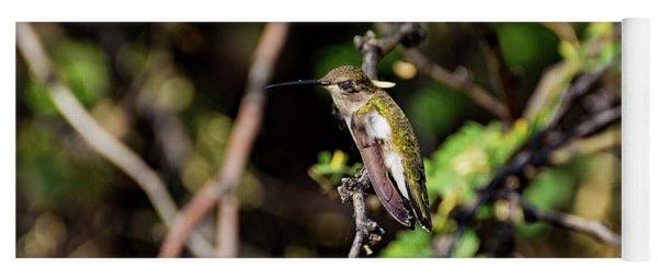 Sleepy Hummingbird Yoga Mat