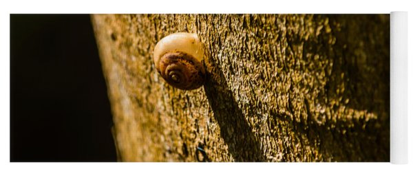 Small Snail On The Tree Yoga Mat