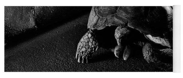 Yoga Mat featuring the photograph Small Turtle Exploring The Surroundings by Eduardo Jose Accorinti
