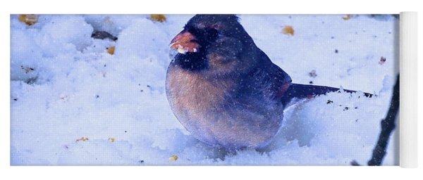 Snow Bird Yoga Mat