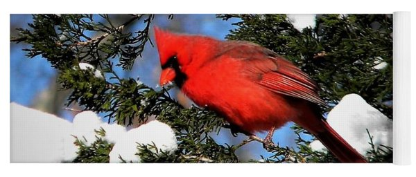 Snow Cardinal Yoga Mat
