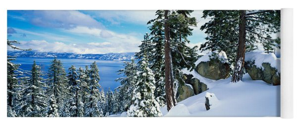 Snow Covered Trees On Mountainside Yoga Mat