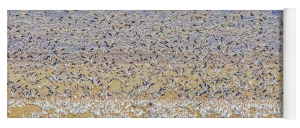Snow Geese Take Off 2 Yoga Mat