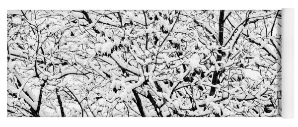 Yoga Mat featuring the photograph Snow On Branches by Lars Lentz