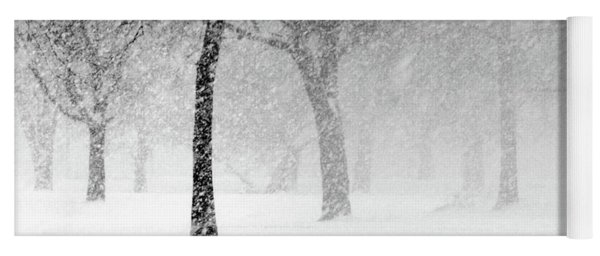 Snow Storm At Starved Rock Yoga Mat