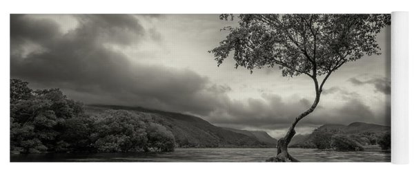 Snowdonia Wales The Lonely Tree Yoga Mat