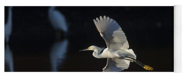Snowy Egret In Flight In The Morning Light Yoga Mat