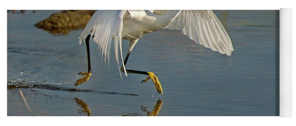 Snowy Egret On The Move Yoga Mat