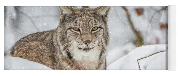 Snowy Lynx Yoga Mat