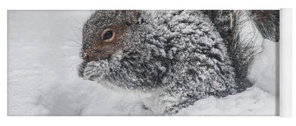 Snowy Squirrel Yoga Mat