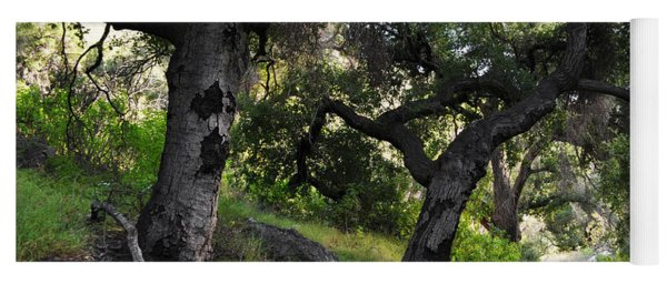 Solstice Canyon Live Oak Trail Yoga Mat