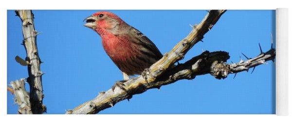 Song Bird Yoga Mat