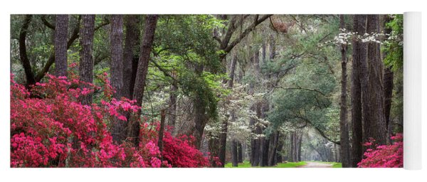 South Carolina Lowcountry Spring Flowers Dirt Road Edisto Island Sc Yoga Mat