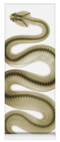 Southern Pacific Rattlesnake, X-ray Yoga Mat