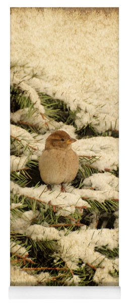 Yoga Mat featuring the photograph Sparrow In Winter II - Textured by Angie Tirado