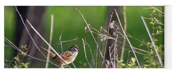 Sparrow On A Branch Yoga Mat