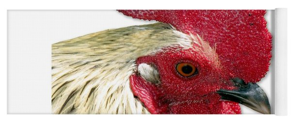 Special Edition Key West Rooster Yoga Mat