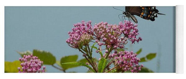 Spicebush Butterfly Yoga Mat