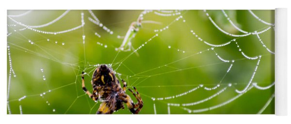 Spider And Spider Web With Dew Drops 05 Yoga Mat