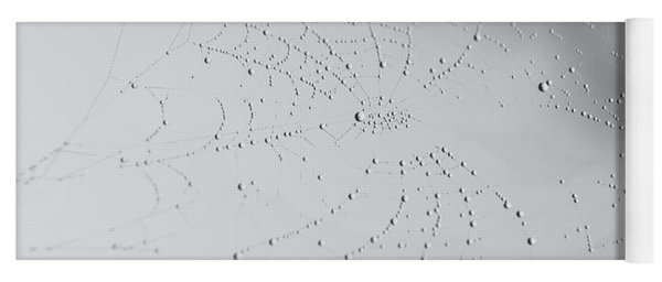 Spider Web After The Storm Yoga Mat