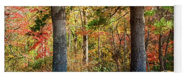 Split Rail Fence And Autumn Leaves Yoga Mat