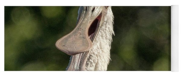 Spoonbill Talk Yoga Mat