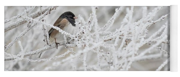 Spotted Towhee In Winter Yoga Mat