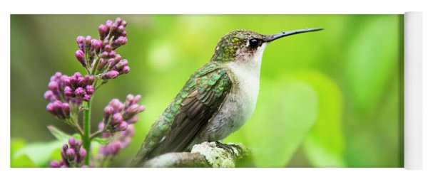 Spring Beauty Ruby Throat Hummingbird Yoga Mat