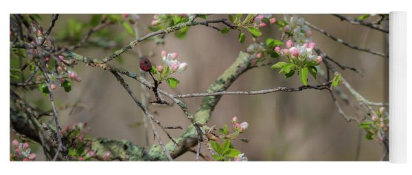 Spring Blossoms 2 Yoga Mat