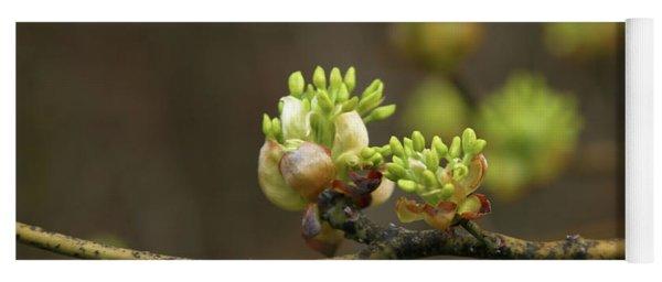 Spring Buds 9365 H_2 Yoga Mat