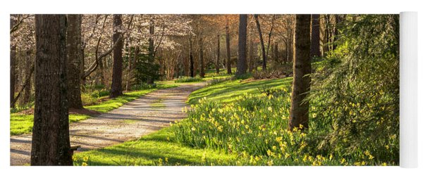 Spring Garden Path Yoga Mat