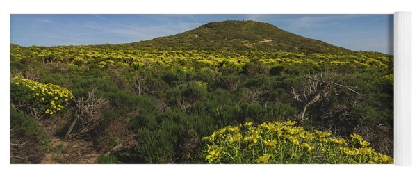 Spring Wildflowers Blooming In Malibu Yoga Mat