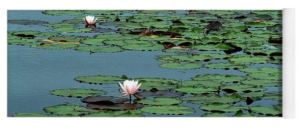 Squam Lilies  Yoga Mat