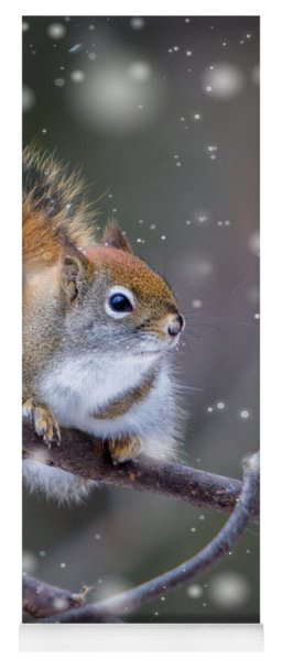 Squirrel Balancing Act Yoga Mat